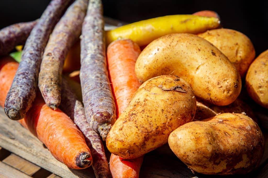 Kartoffeln & Möhren