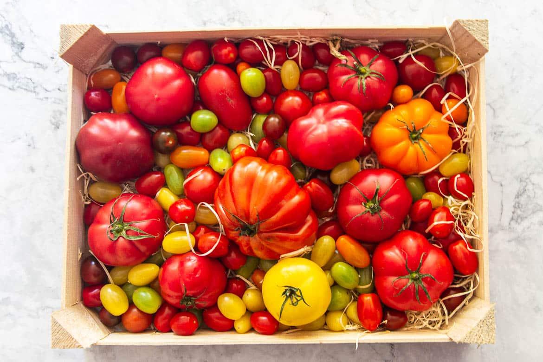 Welche Tomaten für Tomatensalat?